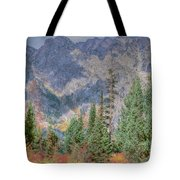 Mountains And Trees Tote Bag