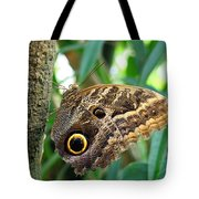 Mournful Owl Butterfly Tote Bag