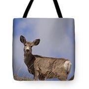 Mule Deer   #0722 Tote Bag