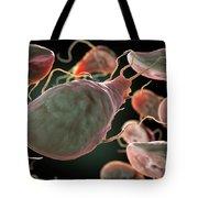 Multiple Giardia Trophozoites Tote Bag