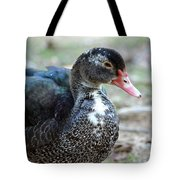 Muscovy 14-8 Tote Bag