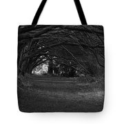 Mystical Yew Trees 1 Tote Bag