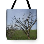 Naked To The World Tote Bag