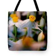 Narcissus Tazetta Tote Bag