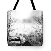 Natural Ice Fog  Tote Bag