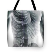 Nerves Of The Trunk Tote Bag