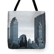 New York City From Central Park Tote Bag
