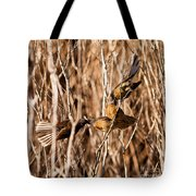 New Zealand Fantail Chicks Being Fed By Parents Tote Bag