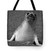 Northern Elephant Seal Weaner Tote Bag