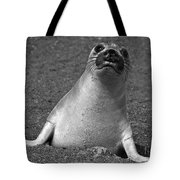 Northern Elephant Seal Weaner Tote Bag