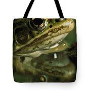 Northern Leopard Frog Tote Bag