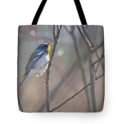 Northern Parula Tote Bag