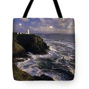 Northhead Ilwaco Lighthouse Tote Bag