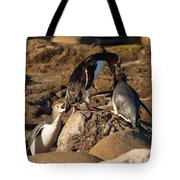 Nz Yellow-eyed Penguins Or Hoiho Feeding The Young Tote Bag