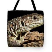 Ocellated Lizard Timon Lepidus Tote Bag