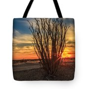 Ocotillo Sunset Tote Bag