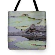 Okefenokee Gator Tote Bag