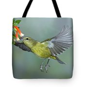 Orange-crowned Warbler Tote Bag