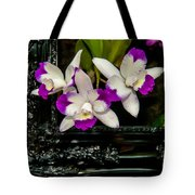 Orchid Flowers Growing Through Old Wooden Picture Frame Tote Bag