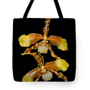 Orchid Series 104 Tote Bag