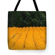 Oregon Orange Field Panoramic Tote Bag