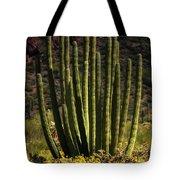 Organ Pipe Cactus  Tote Bag