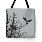 Osprey Love Tote Bag