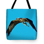Osprey With Catch Tote Bag