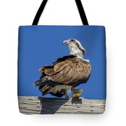 Osprey With Fish In Talons Tote Bag