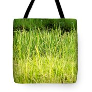 Paddy Field Tote Bag