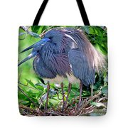 Pair Of Tricolored Heron At Nest Tote Bag