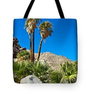 Palm Oasis On Borrego Palm Canyon Trail In Anza-borrego Desert Sp-ca Tote Bag