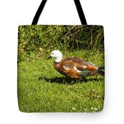 Female Paradise Duck Tote Bag