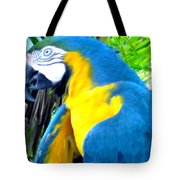 Blue Yellow Macaw. Parrot. Photo Of Bird Tote Bag
