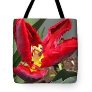Parrot Tulip Named Rococo Tote Bag