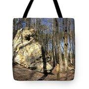 Peach Tree Rock-5 Tote Bag