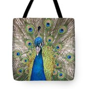 Peacock Full Plumage Tote Bag