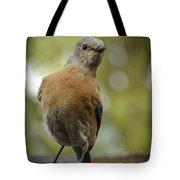 Peering Bluebird Tote Bag