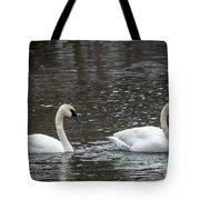 Perfect Pair Tote Bag