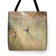 Pied-billed Grebes Tote Bag