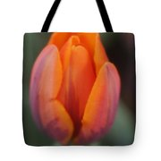 Pillow Soft Tote Bag