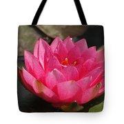 Pink Bloom... Tote Bag