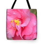 Pink Camellia Closeup With Light Tote Bag