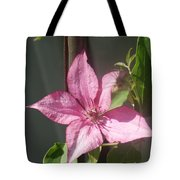 Pink  Clematis   # Tote Bag