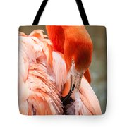 Pink Flamingo At A Zoo In Spring Tote Bag