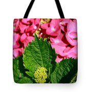 Pink Hydrangea Tote Bag