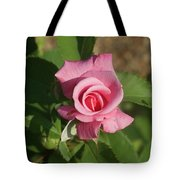 Pink Rose... Tote Bag