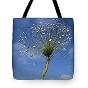 Pipewort Grassland Plants Blooming Tote Bag