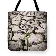 Plant Growing Through Dirt Crack During Drought   Tote Bag