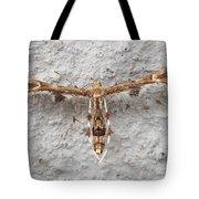 Plume Moth Tote Bag